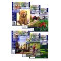 Série Cours de peinture en vidéo, volumes 19 à 24